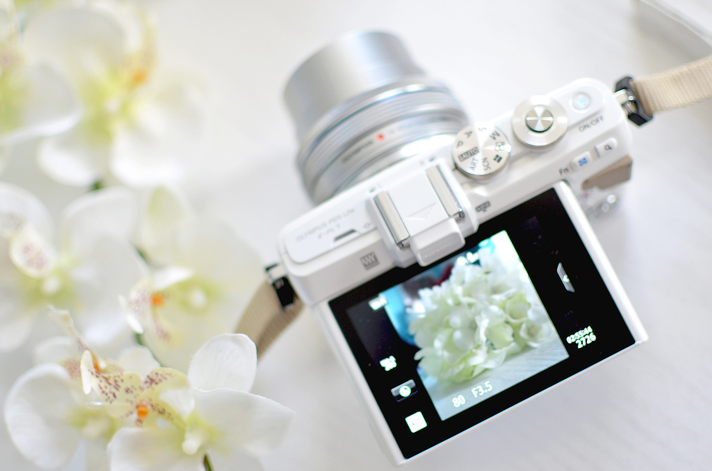 OLYMPUS PEN CAMERA flip screen