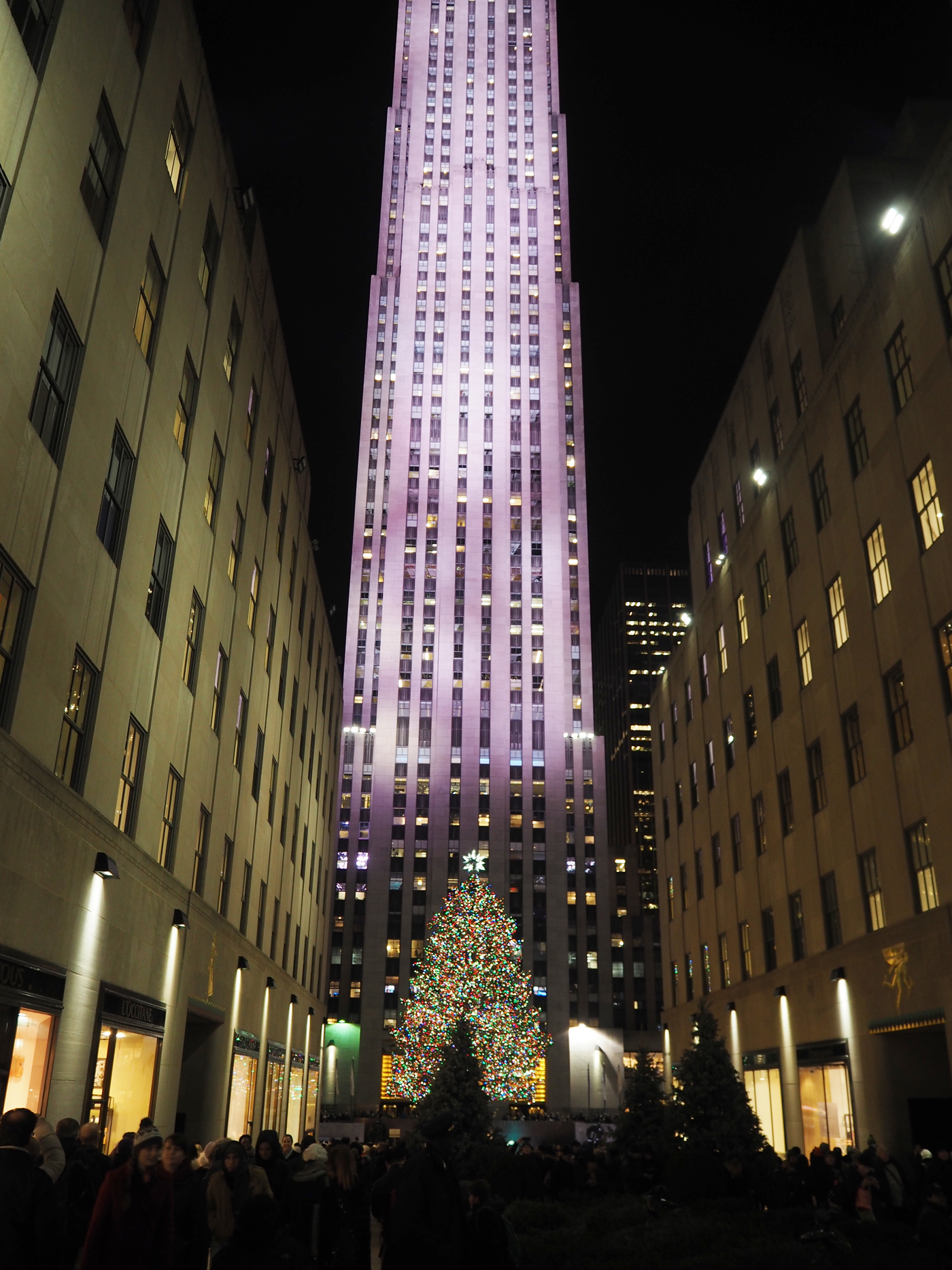 NEW YORK ROCKEFELLA CHRISTMAS TREE