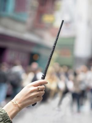 HARRY POTTER WORLD INTERACTIVE WAND