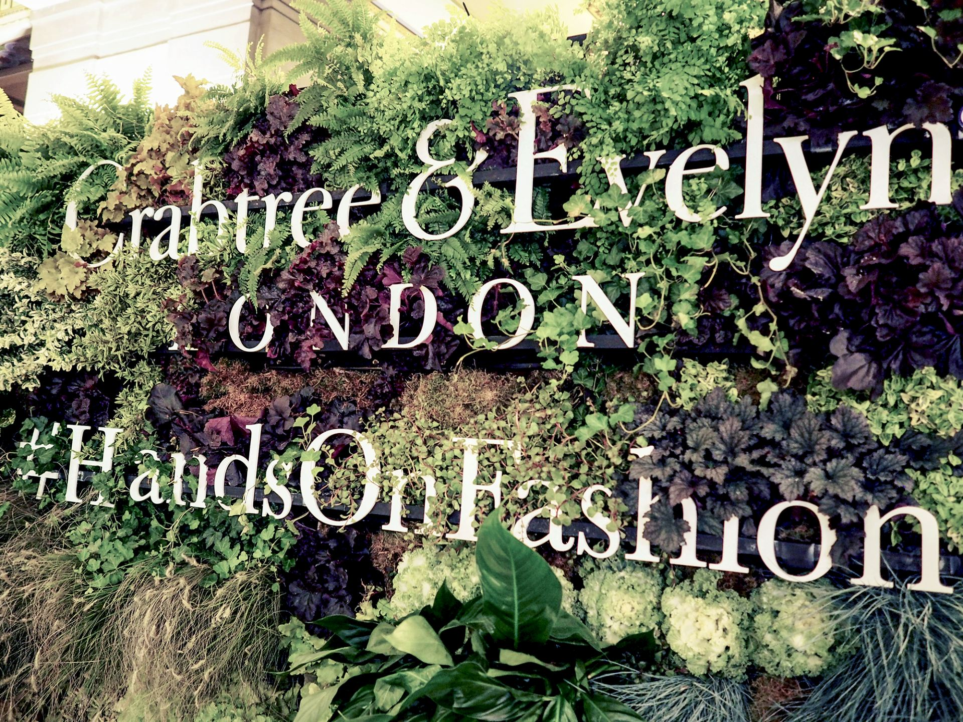 crabtree & evelyn fashion scout