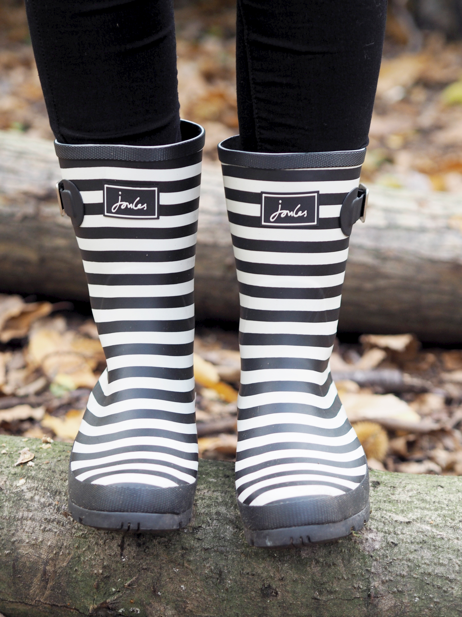 joules wellies