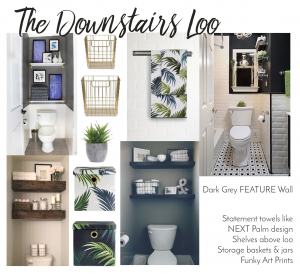 downstairs loo ideas