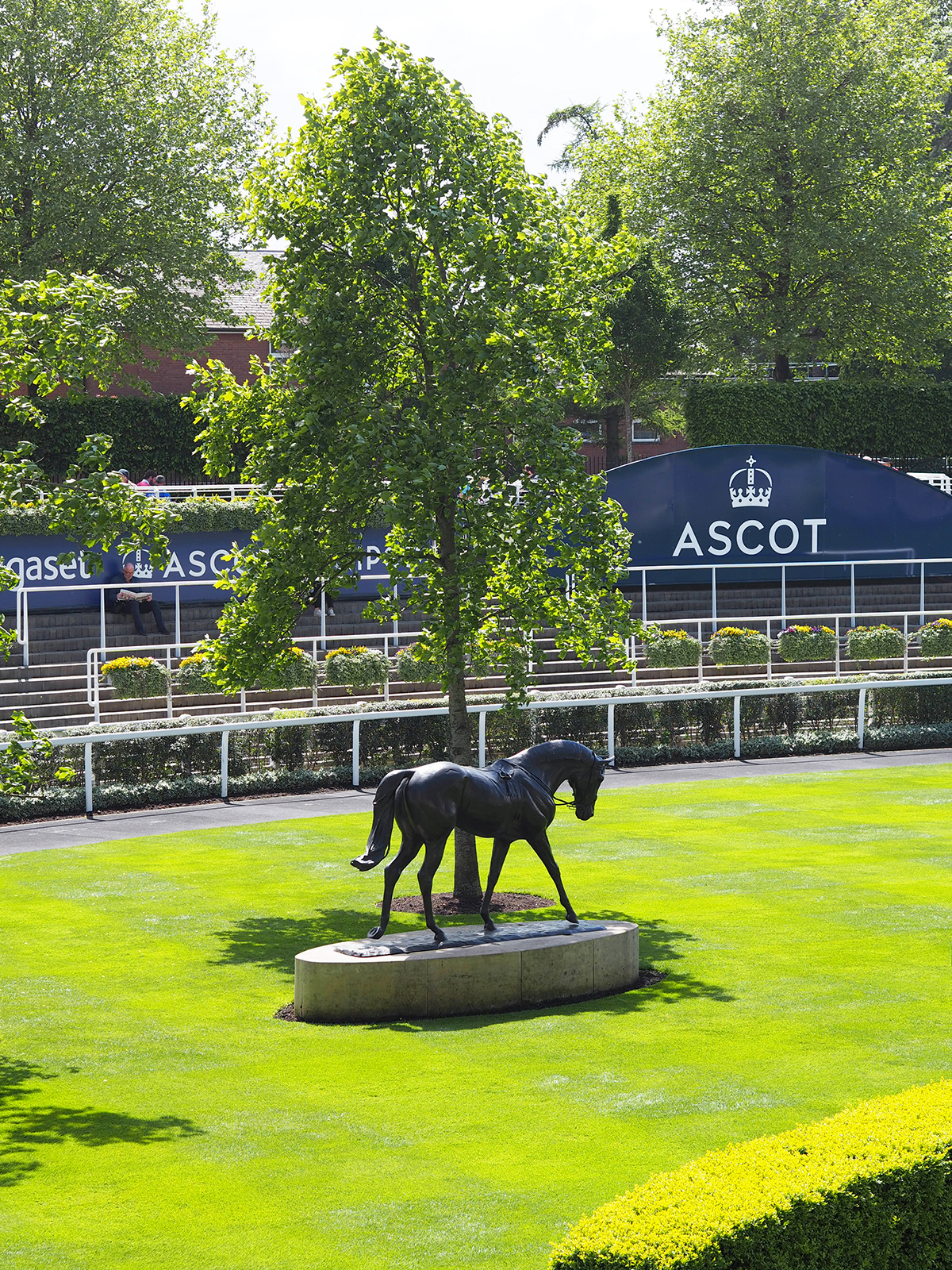 day out at ascot