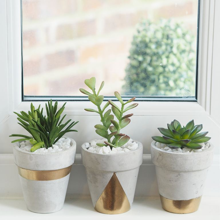 gold concrete succulent planter DIY