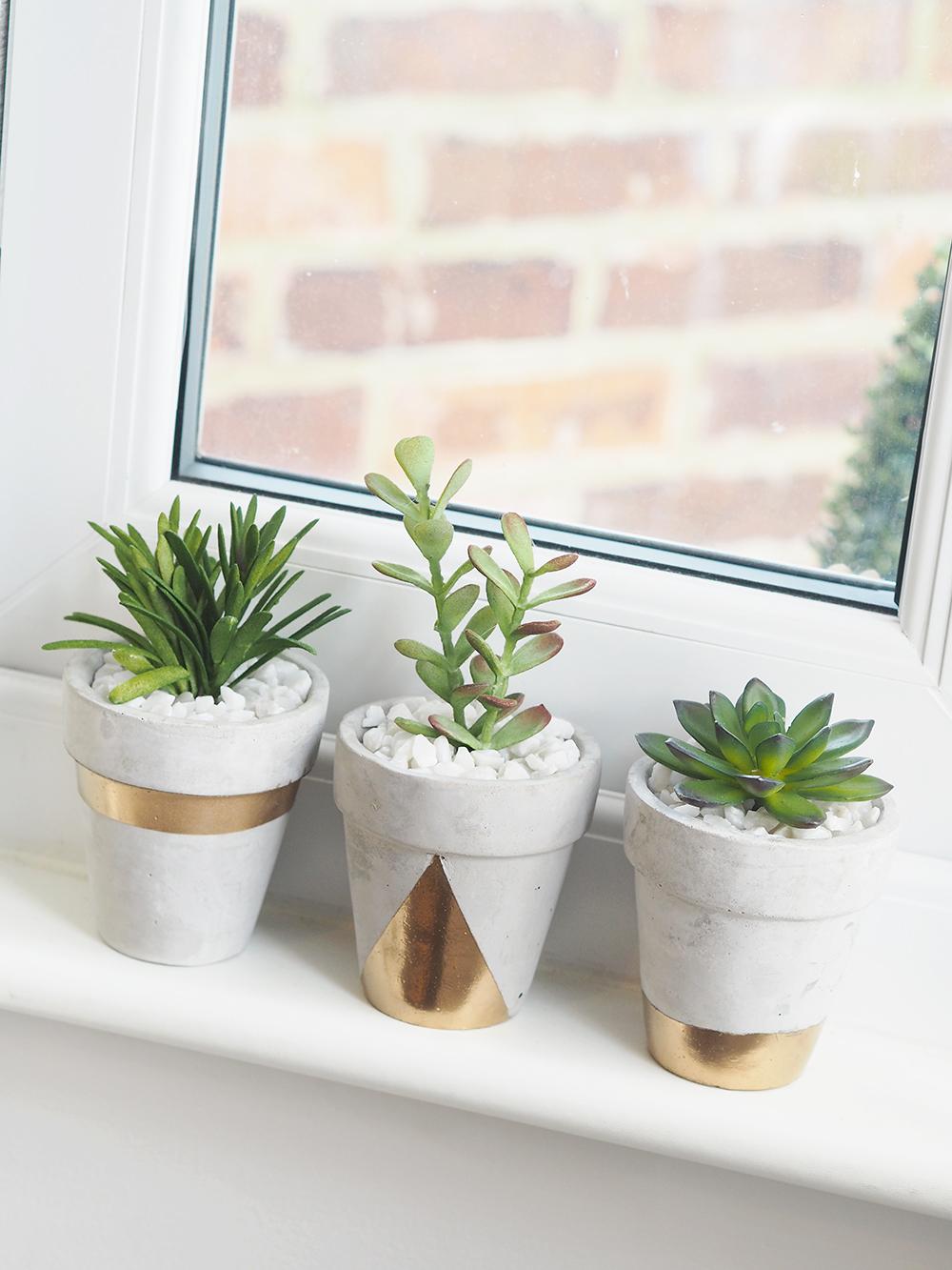 gold concrete succulent planters DIY