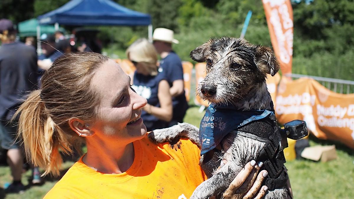 essex muddy dog challenge