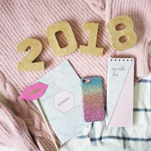 2017 highlights and goals for 2018
