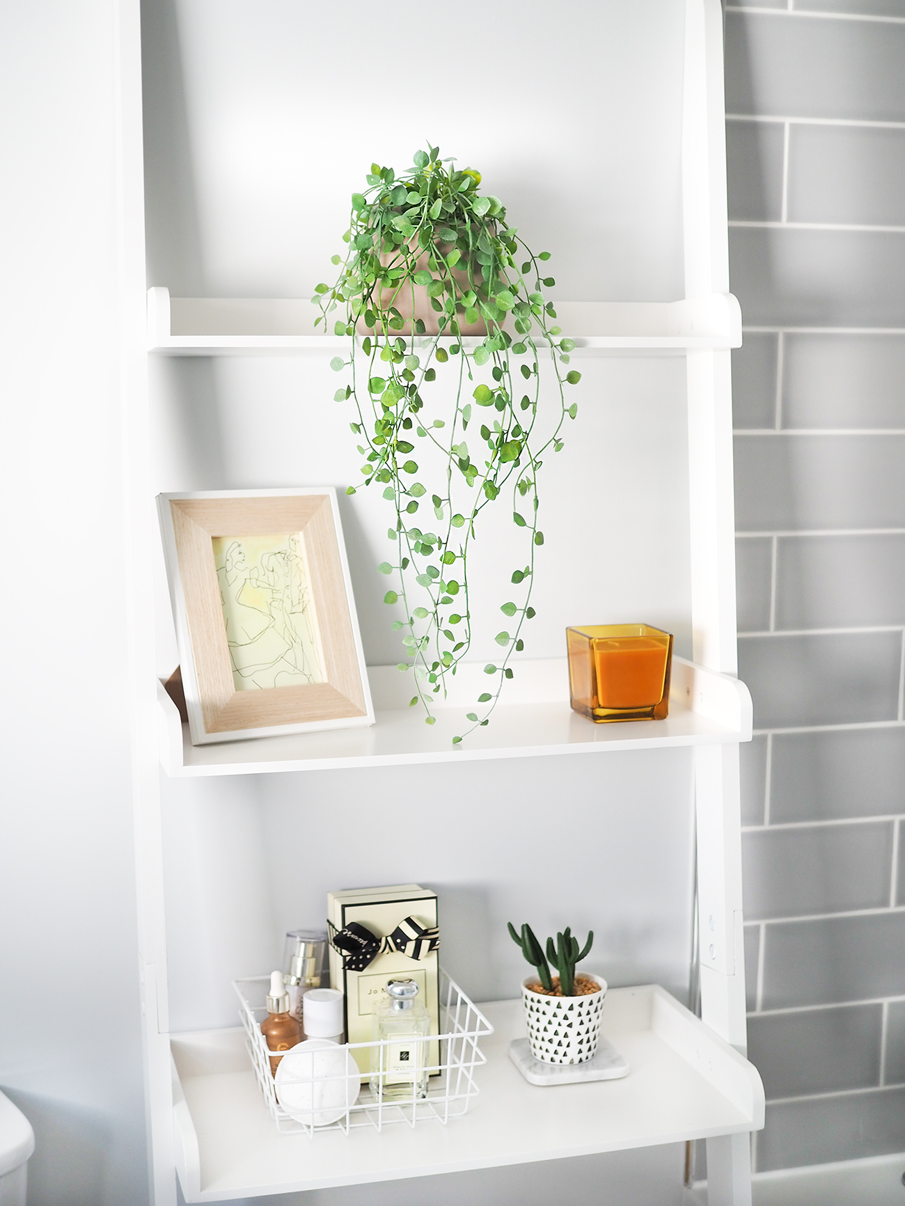 bathroom ladder shelves